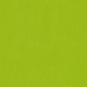 Lime 3919-503