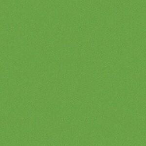 Kiwi 3701-503