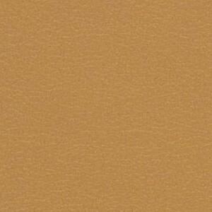 Caramel FT-022