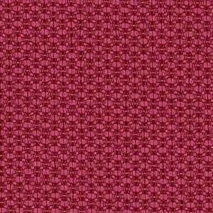 Raspberry 6557