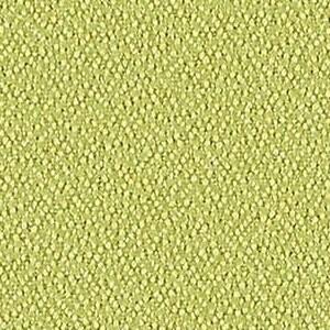 Celery 350 113