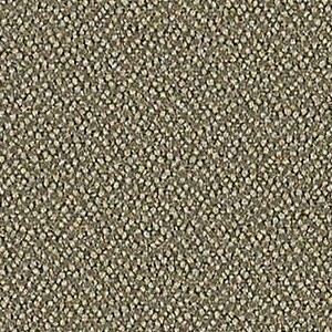 Jodhpurs 350 017