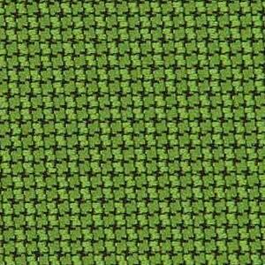 Evergreen 299-033