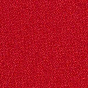 Hibiscus 300-011