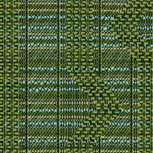 Grass 455-003