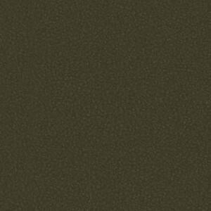 Sepia Dark NO-010