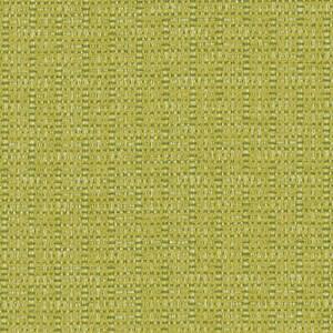 Citrus 456-013