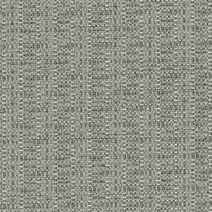 Silver 456-016