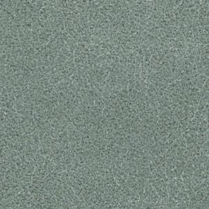 Agave GV-033