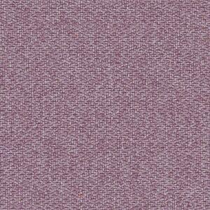 Violet 65348