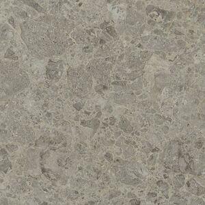 9307 Silver Shalestone