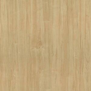 8906 Danish Maple