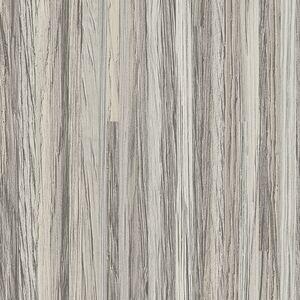 Silver Oak Ply 8203 K 28